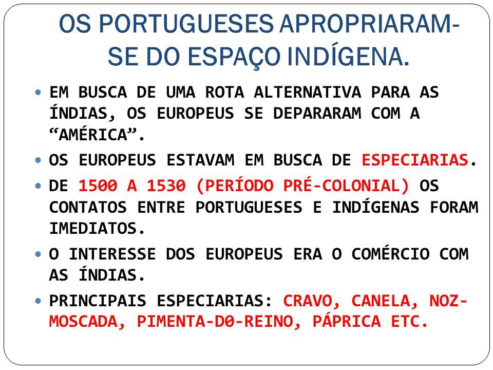 OS PORTUGUESES APROPRIARAM-SE DO ESPAÇO INDÍGENA.