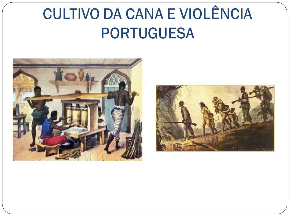 CULTIVO DA CANA E VIOLÊNCIA PORTUGUESA