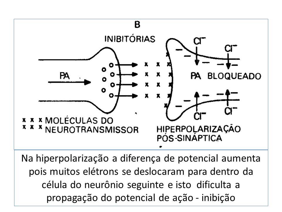 Na hiperpolarização a diferença de potencial aumenta pois muitos elétrons se deslocaram para dentro da célula do neurônio seguinte e isto dificulta a propagação do potencial de ação - inibição