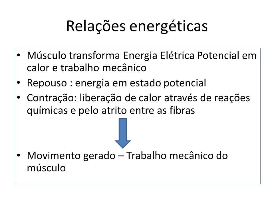 Relações energéticas Músculo transforma Energia Elétrica Potencial em calor e trabalho mecânico. Repouso : energia em estado potencial.