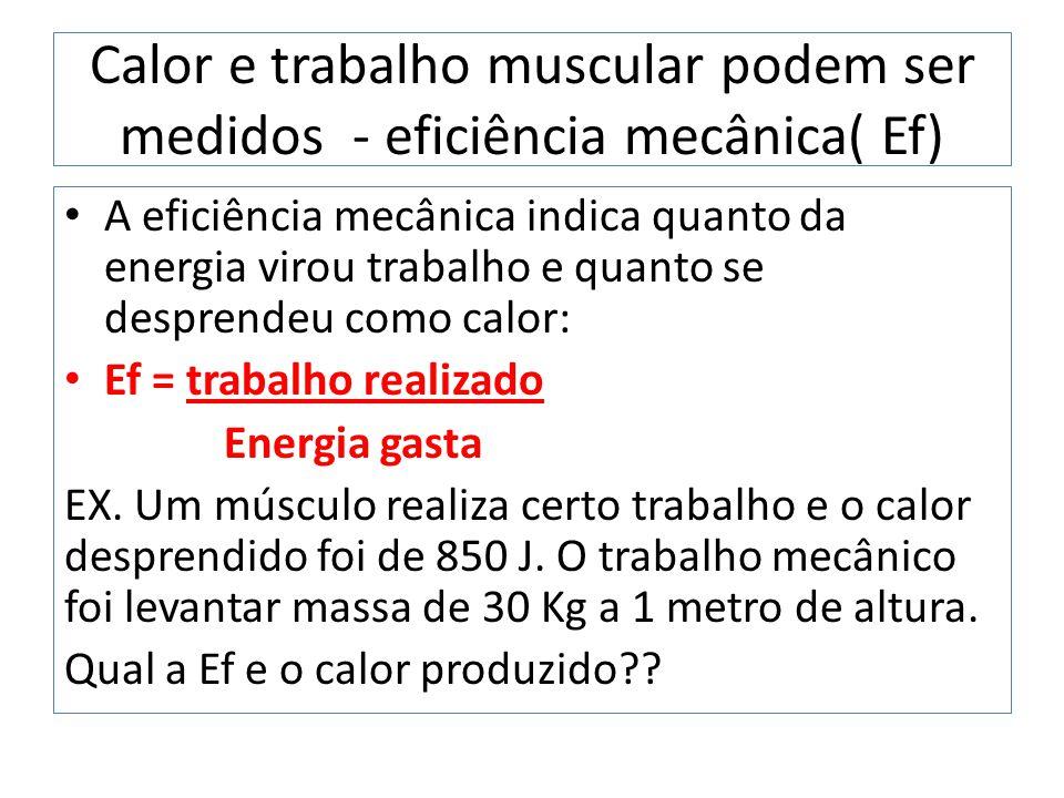 Calor e trabalho muscular podem ser medidos - eficiência mecânica( Ef)