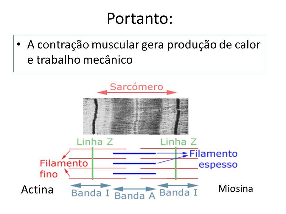 Portanto: A contração muscular gera produção de calor e trabalho mecânico Actina Miosina