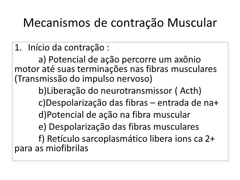 Mecanismos de contração Muscular