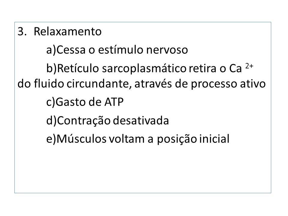 Relaxamento a)Cessa o estímulo nervoso. b)Retículo sarcoplasmático retira o Ca 2+ do fluido circundante, através de processo ativo.