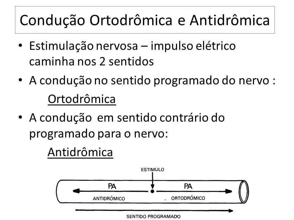 Condução Ortodrômica e Antidrômica