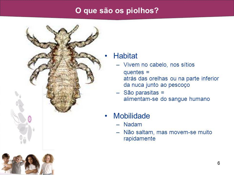 O que são os piolhos Habitat Mobilidade Vivem no cabelo, nos sítios