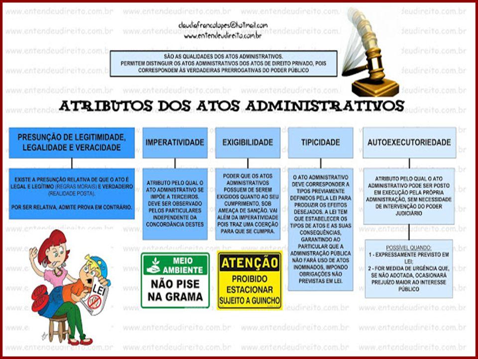 DIREITO ADMINISTRATIVO PROFESSORA AMANDA