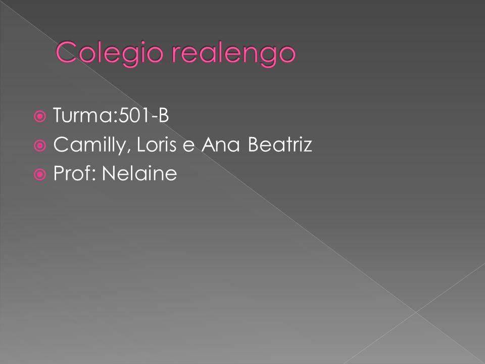 Colegio realengo Turma:501-B Camilly, Loris e Ana Beatriz