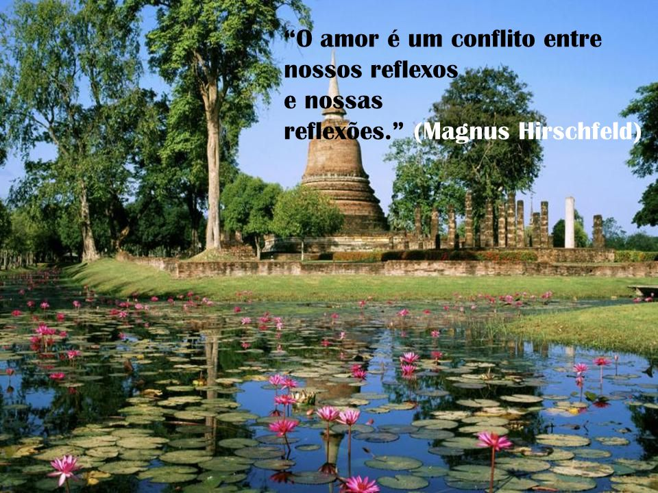 O amor é um conflito entre