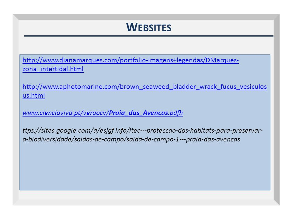 Outubro 2009 Websites.
