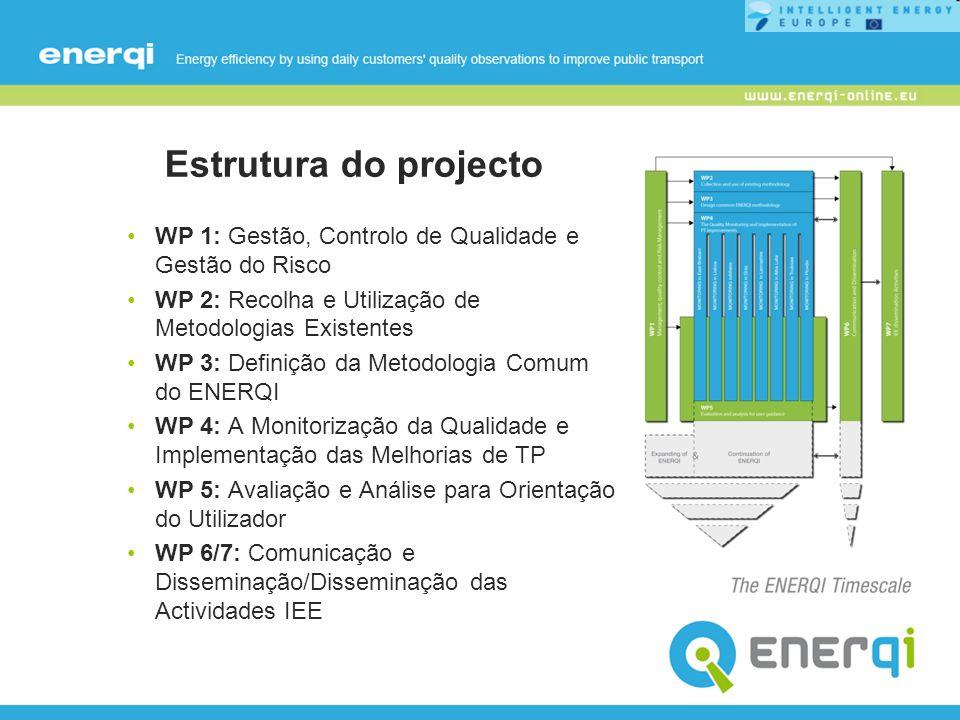 Estrutura do projecto WP 1: Gestão, Controlo de Qualidade e Gestão do Risco. WP 2: Recolha e Utilização de Metodologias Existentes.