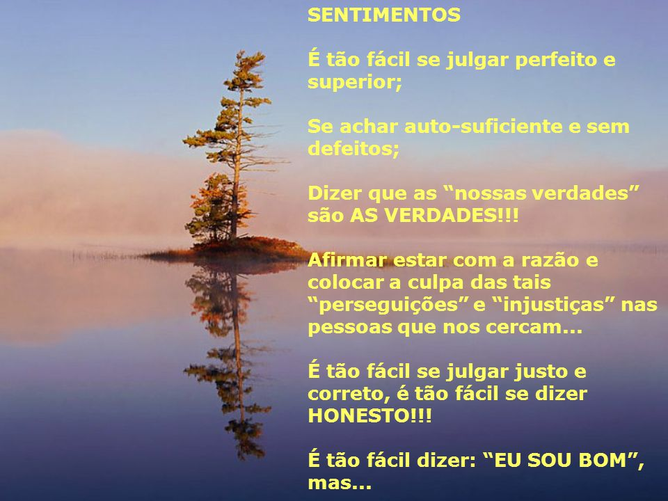 SENTIMENTOS É tão fácil se julgar perfeito e superior; Se achar auto-suficiente e sem defeitos; Dizer que as nossas verdades são AS VERDADES!!!