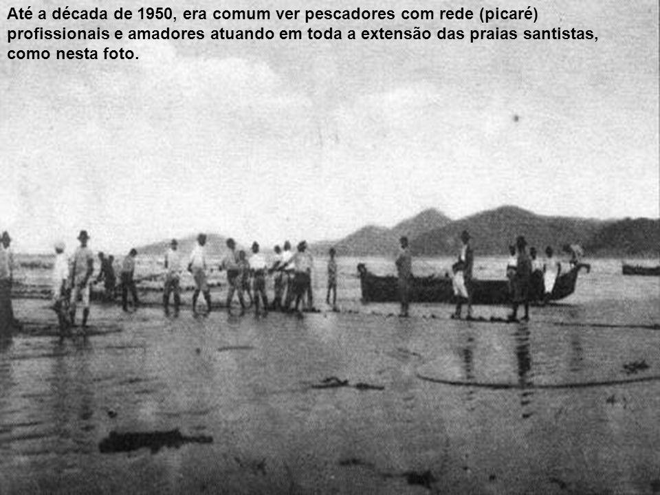 Até a década de 1950, era comum ver pescadores com rede (picaré) profissionais e amadores atuando em toda a extensão das praias santistas, como nesta foto.