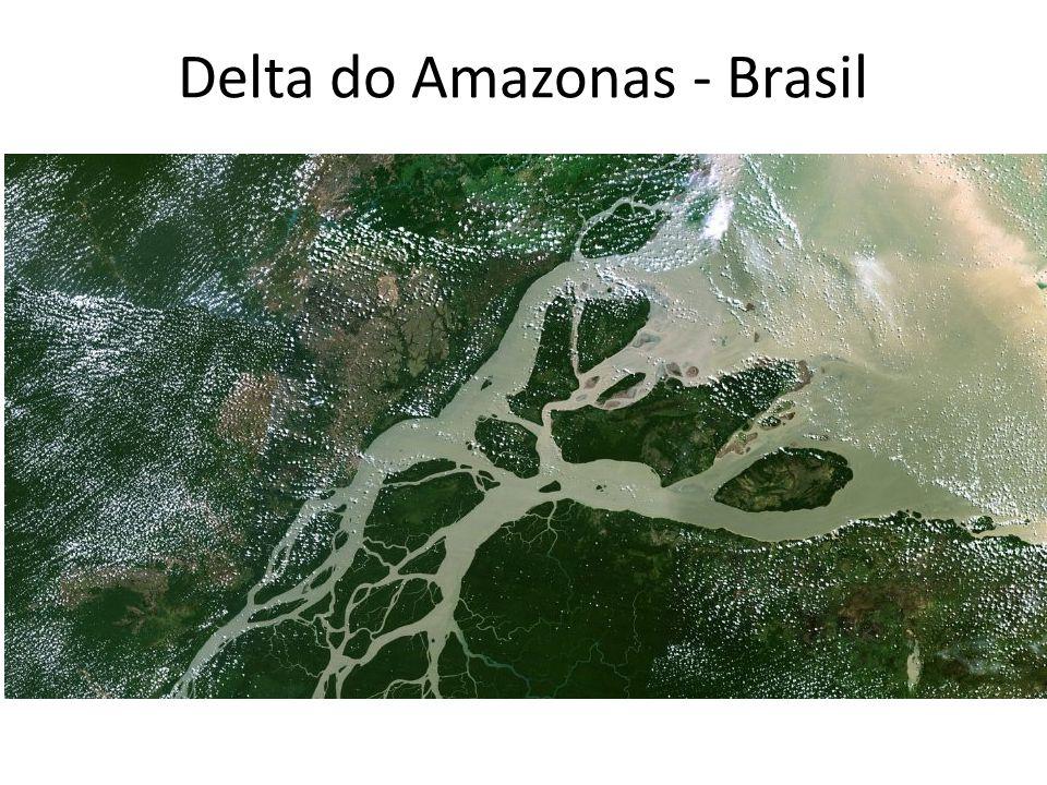 Delta do Amazonas - Brasil