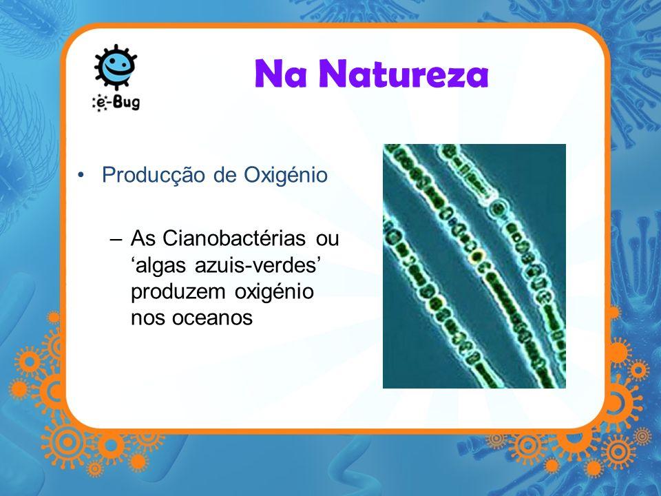Na Natureza Producção de Oxigénio