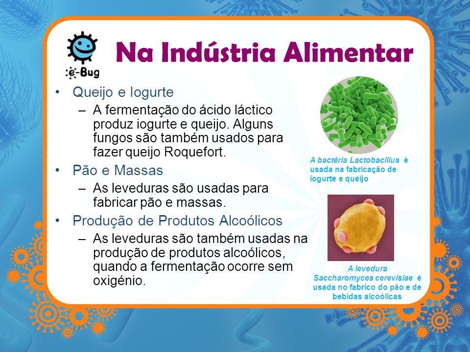 Na Indústria Alimentar