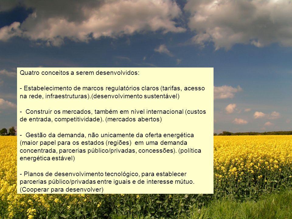 Quatro conceitos a serem desenvolvidos: - Estabelecimento de marcos regulatórios claros (tarifas, acesso na rede, infraestruturas).(desenvolvimento sustentável) - Construir os mercados, também em nível internacional (custos de entrada, competitividade).