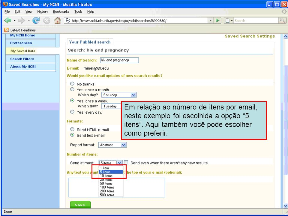 Em relação ao número de itens por email, neste exemplo foi escolhida a opção 5 itens .