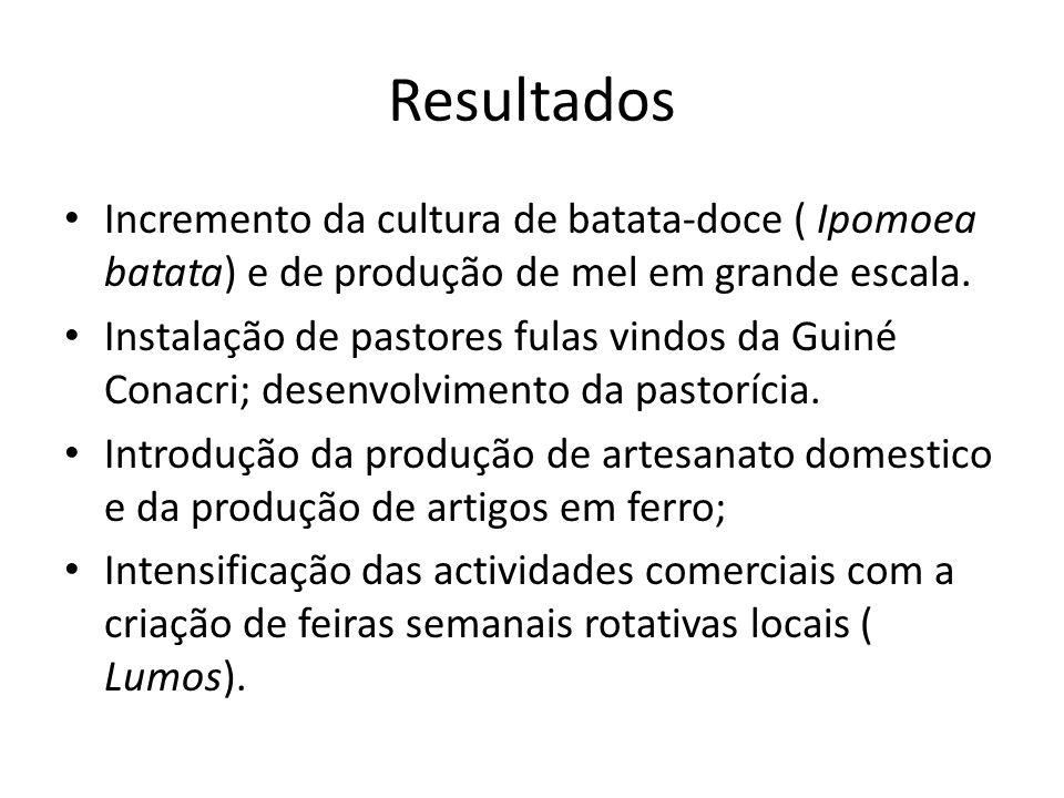ResultadosIncremento da cultura de batata-doce ( Ipomoea batata) e de produção de mel em grande escala.