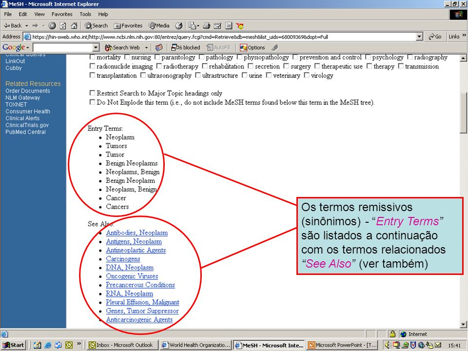 Entry terms and See Also references