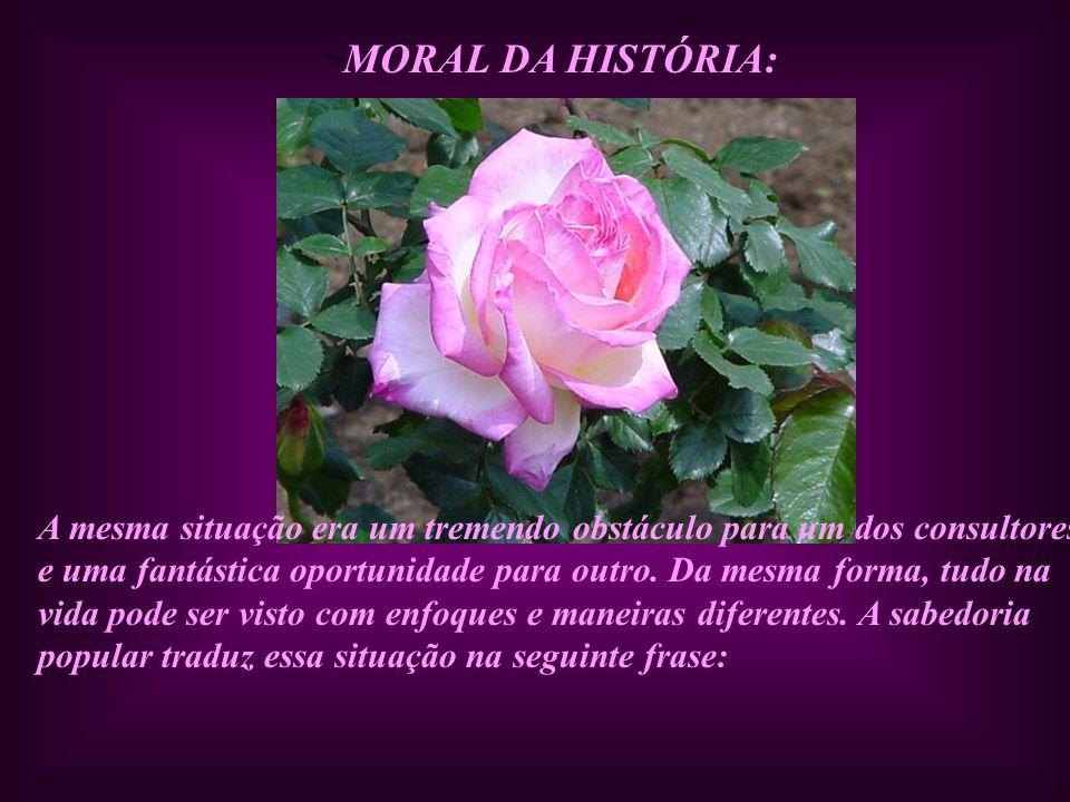>MORAL DA HISTÓRIA: