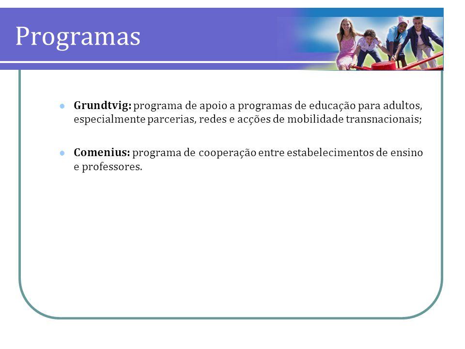 ProgramasGrundtvig: programa de apoio a programas de educação para adultos, especialmente parcerias, redes e acções de mobilidade transnacionais;