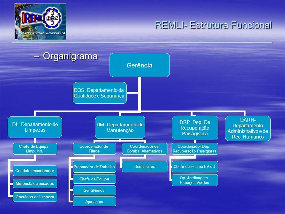 REMLI- Estrutura Funcional _________________________________________________