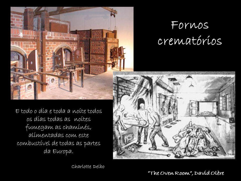Fornos crematórios