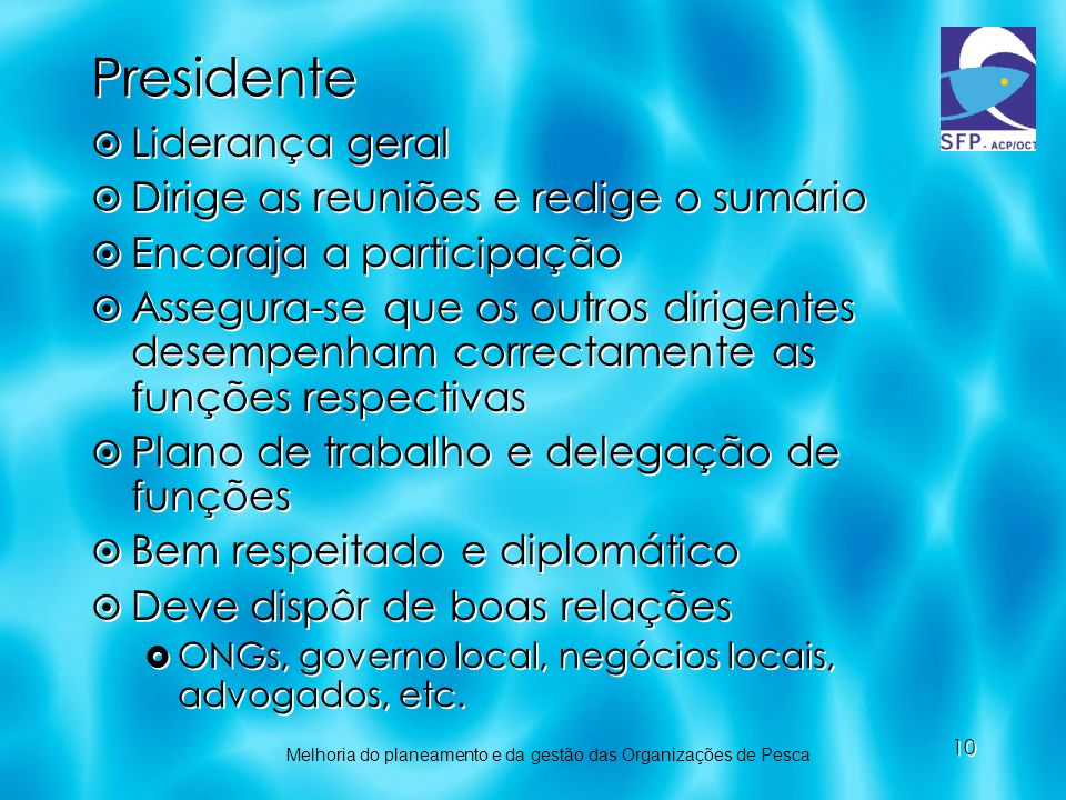 Presidente Liderança geral Dirige as reuniões e redige o sumário