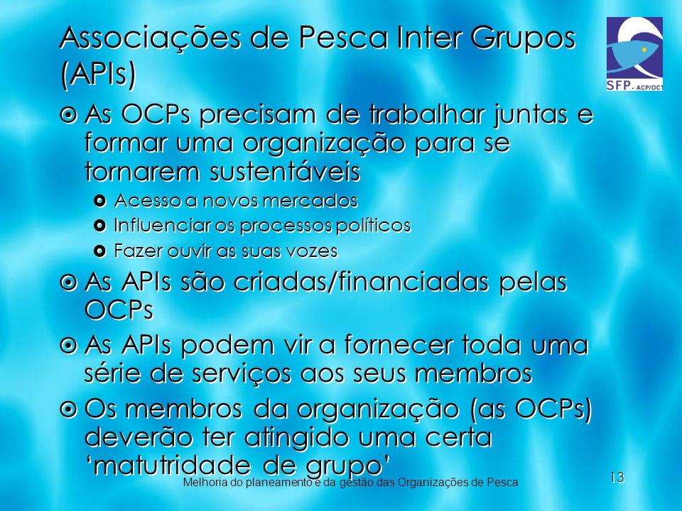 Associações de Pesca Inter Grupos (APIs)