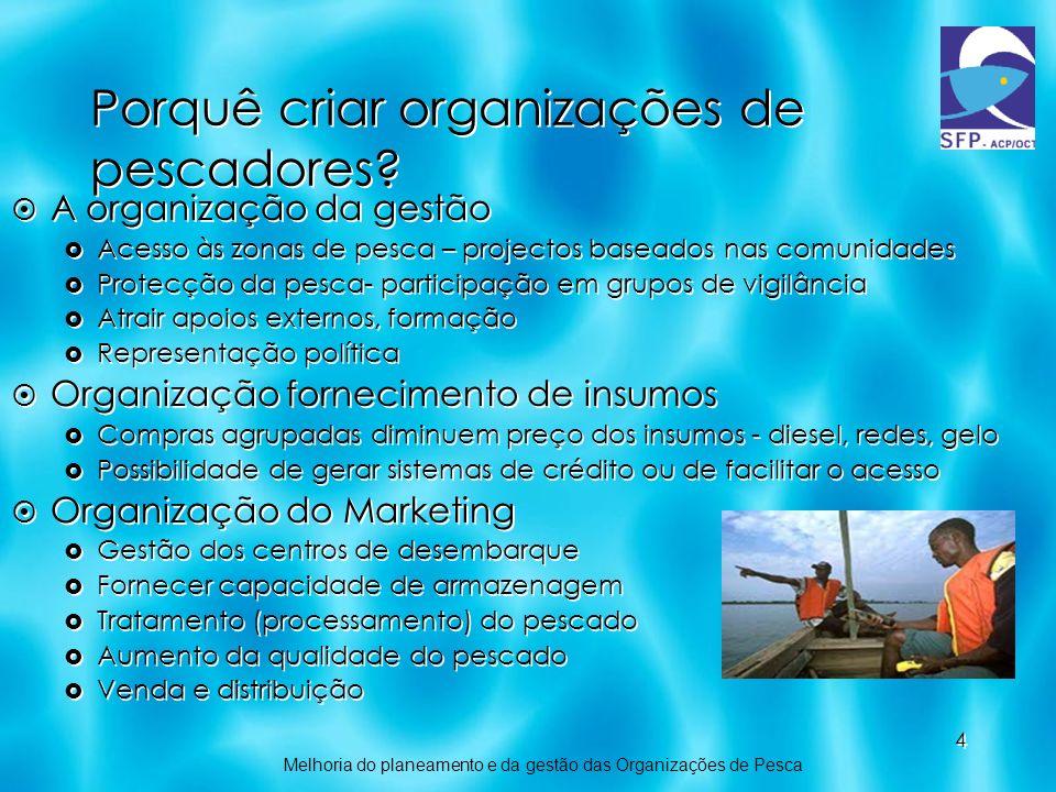 Porquê criar organizações de pescadores