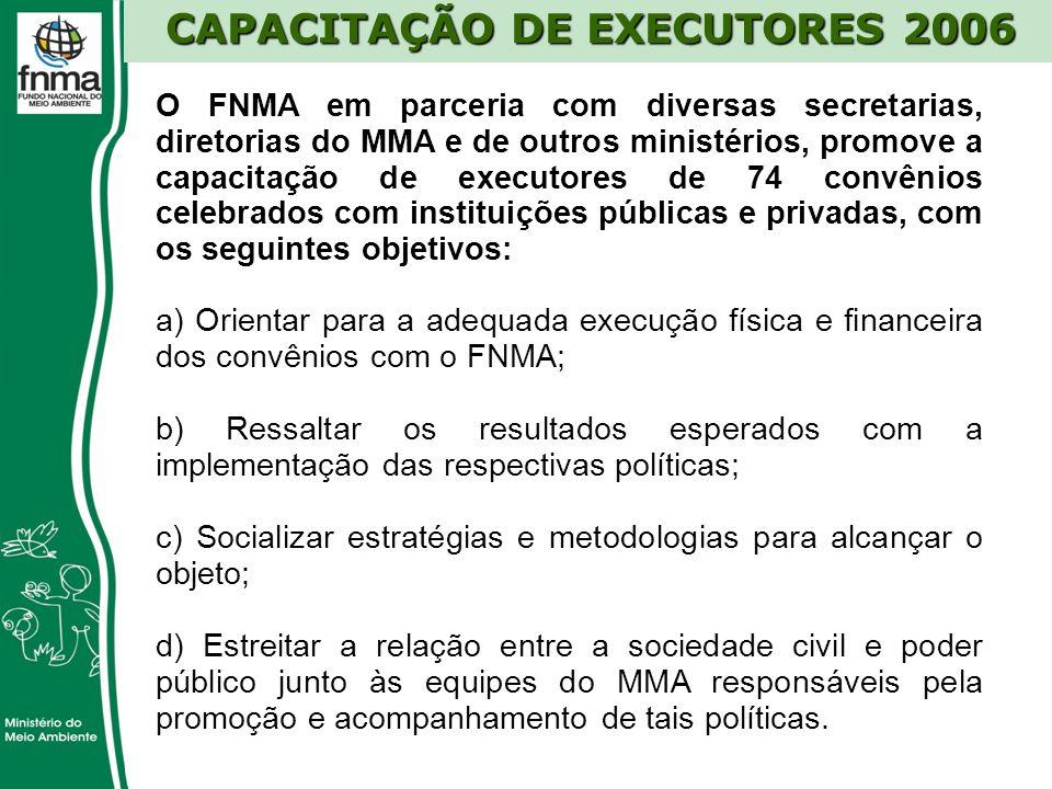 CAPACITAÇÃO DE EXECUTORES 2006