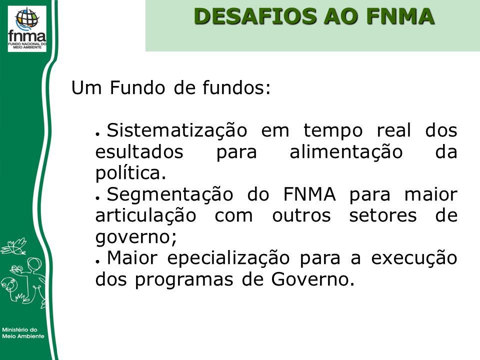 DESAFIOS AO FNMA Um Fundo de fundos: