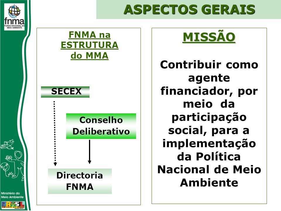 FNMA na ESTRUTURA do MMA Conselho Deliberativo