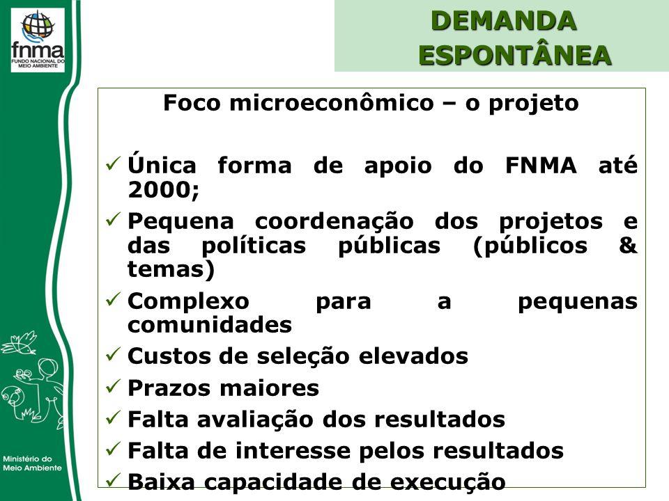 Foco microeconômico – o projeto