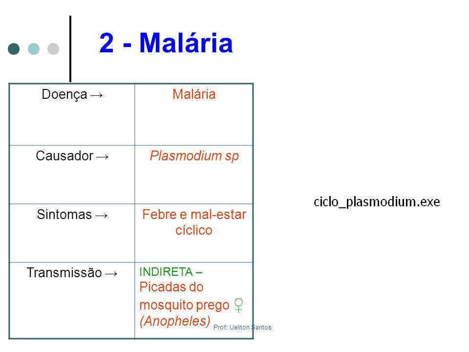 Febre e mal-estar cíclico