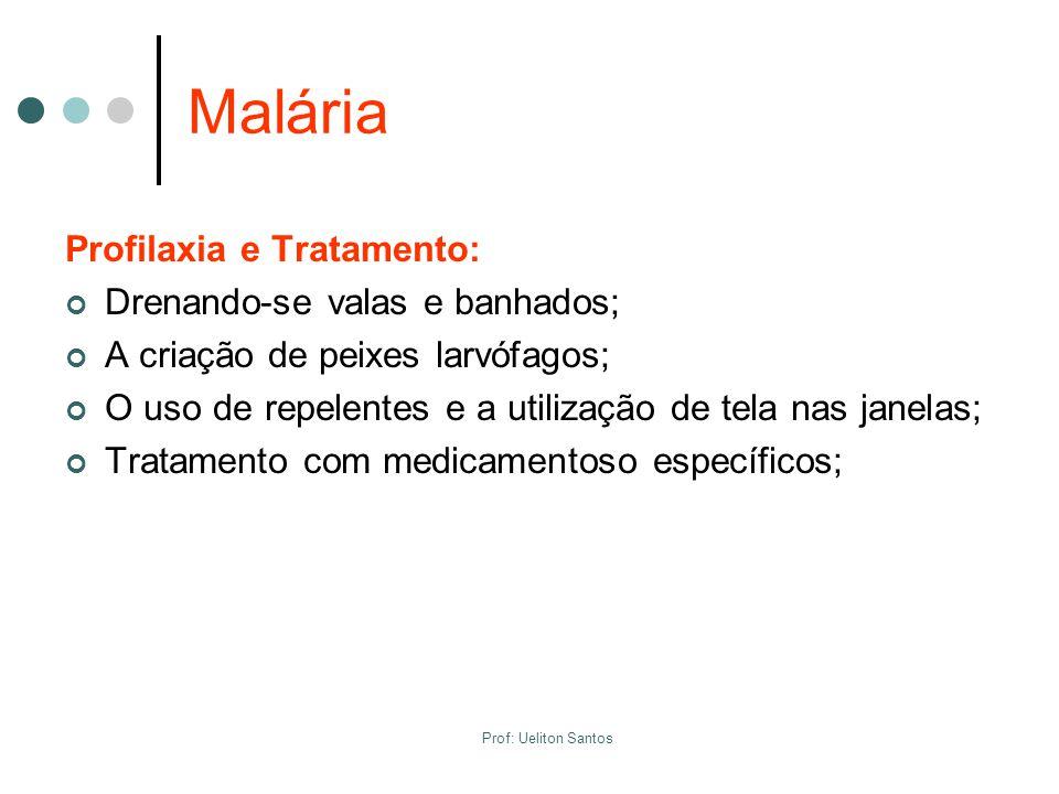 Malária Profilaxia e Tratamento: Drenando-se valas e banhados;