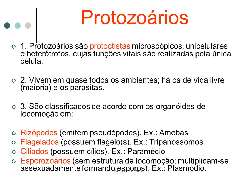 Protozoários 1. Protozoários são protoctistas microscópicos, unicelulares e heterótrofos, cujas funções vitais são realizadas pela única célula.