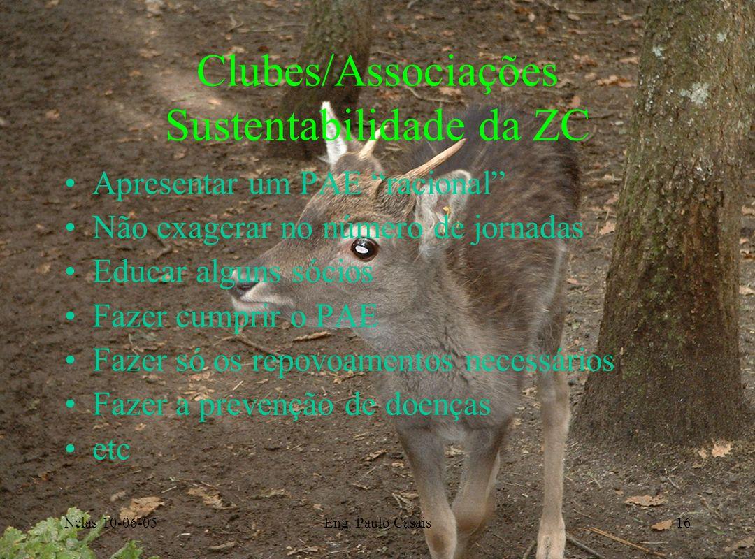 Clubes/Associações Sustentabilidade da ZC