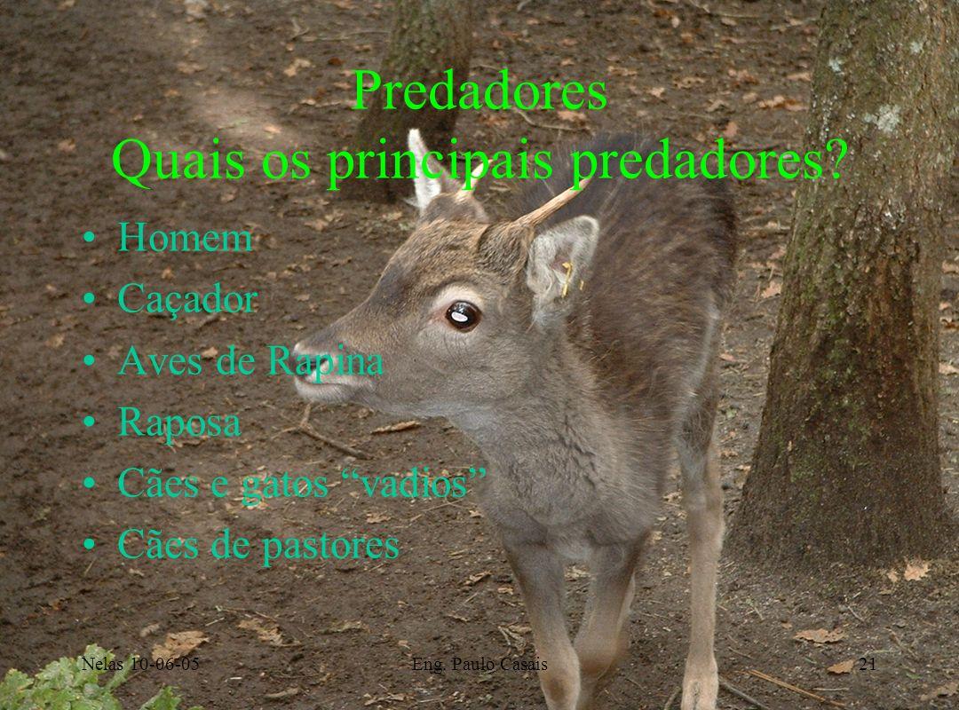 Predadores Quais os principais predadores