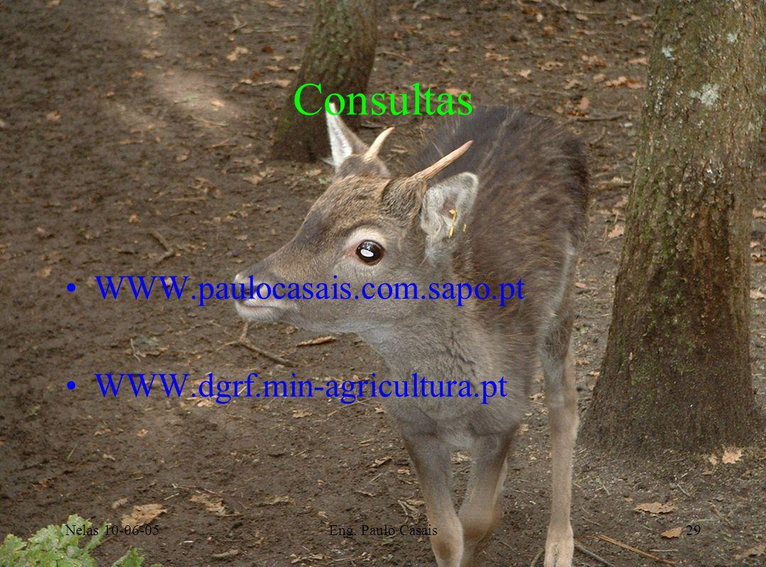 Consultas WWW.paulocasais.com.sapo.pt WWW.dgrf.min-agricultura.pt