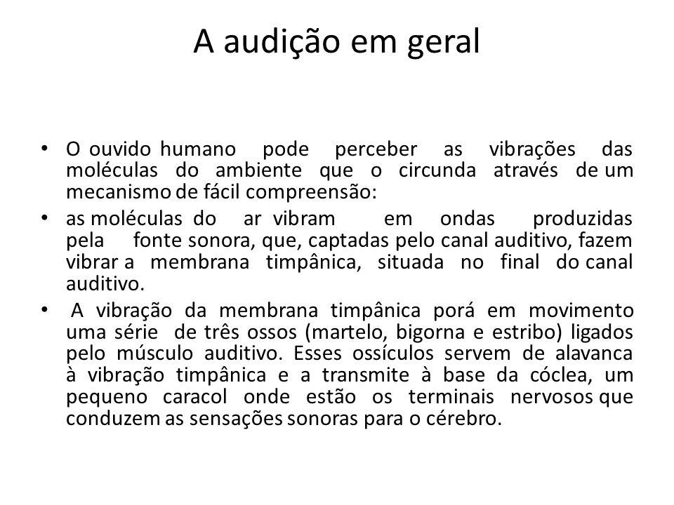 A audição em geral