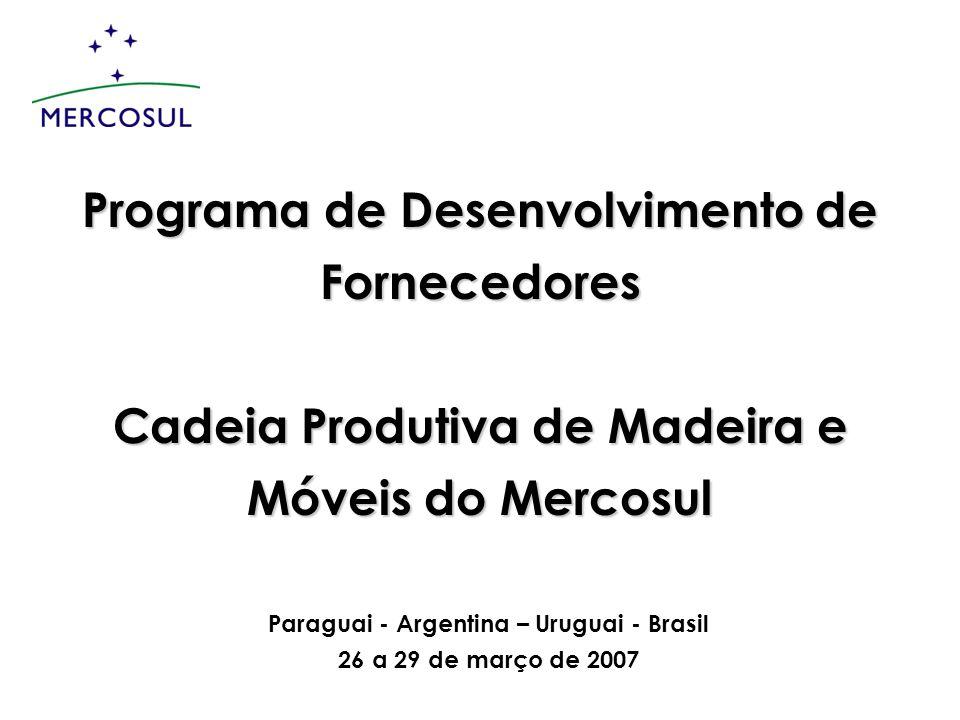 Programa de Desenvolvimento de Fornecedores