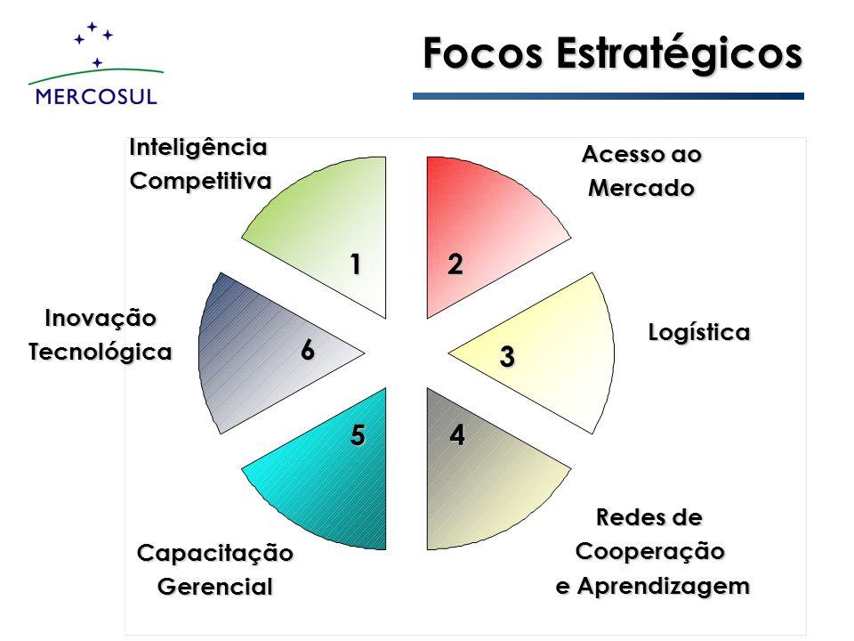 Focos Estratégicos 1 2 6 3 5 4 Inteligência Acesso ao Competitiva