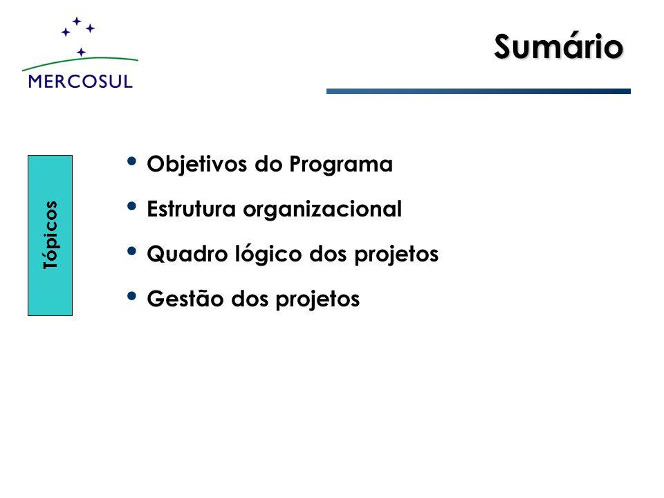 Sumário Objetivos do Programa Estrutura organizacional