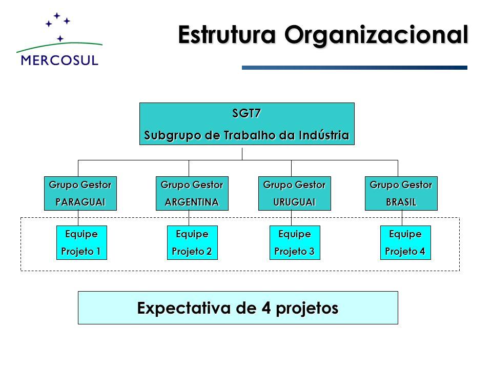 Subgrupo de Trabalho da Indústria Expectativa de 4 projetos
