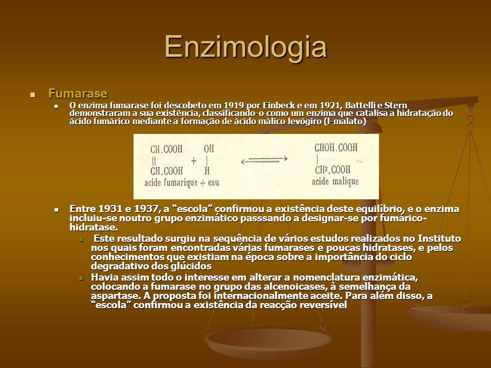 EnzimologiaFumarase.
