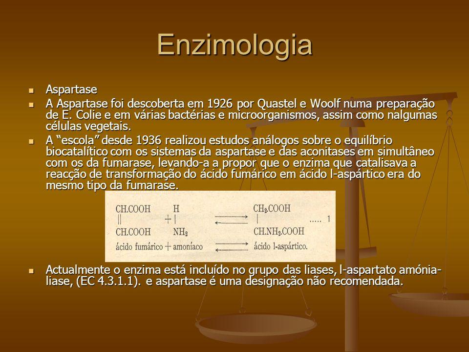 Enzimologia Aspartase