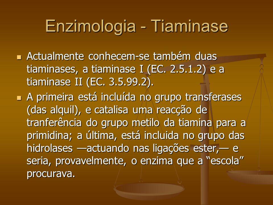 Enzimologia - Tiaminase