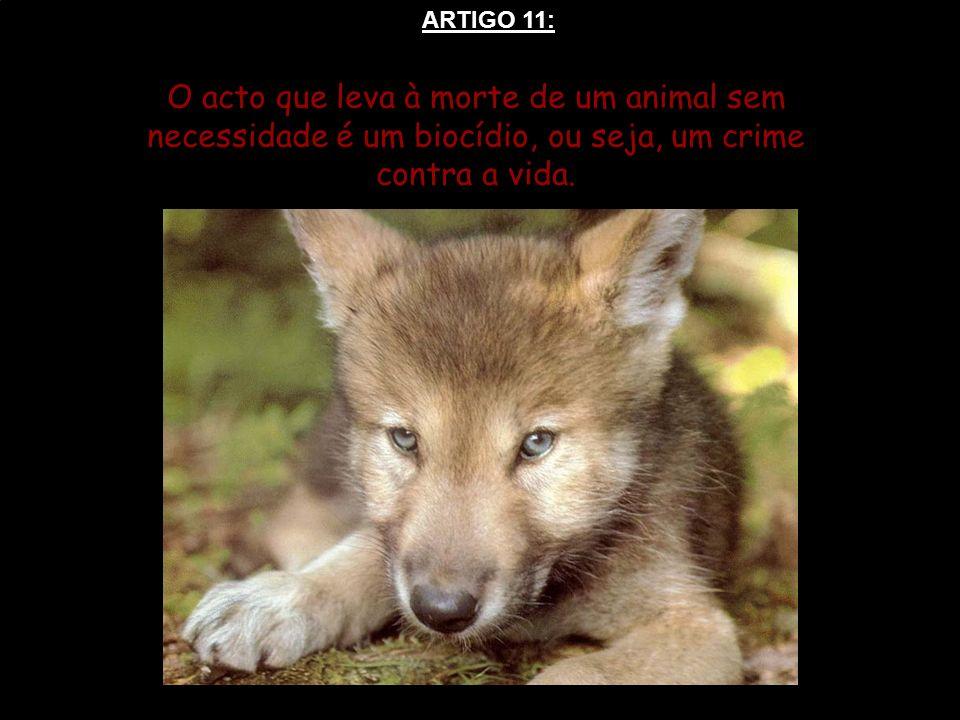 ARTIGO 11: O acto que leva à morte de um animal sem necessidade é um biocídio, ou seja, um crime contra a vida.